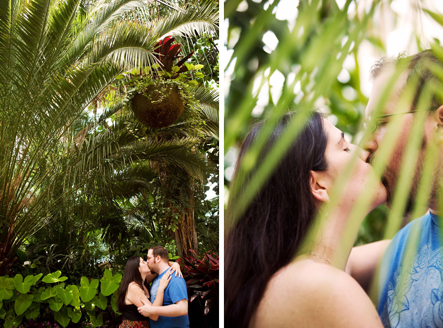 phipps engagement portraits